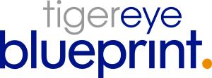 Logo for Tiger Eye's Blueprint for Knowledge Management: The KM technology for iManage